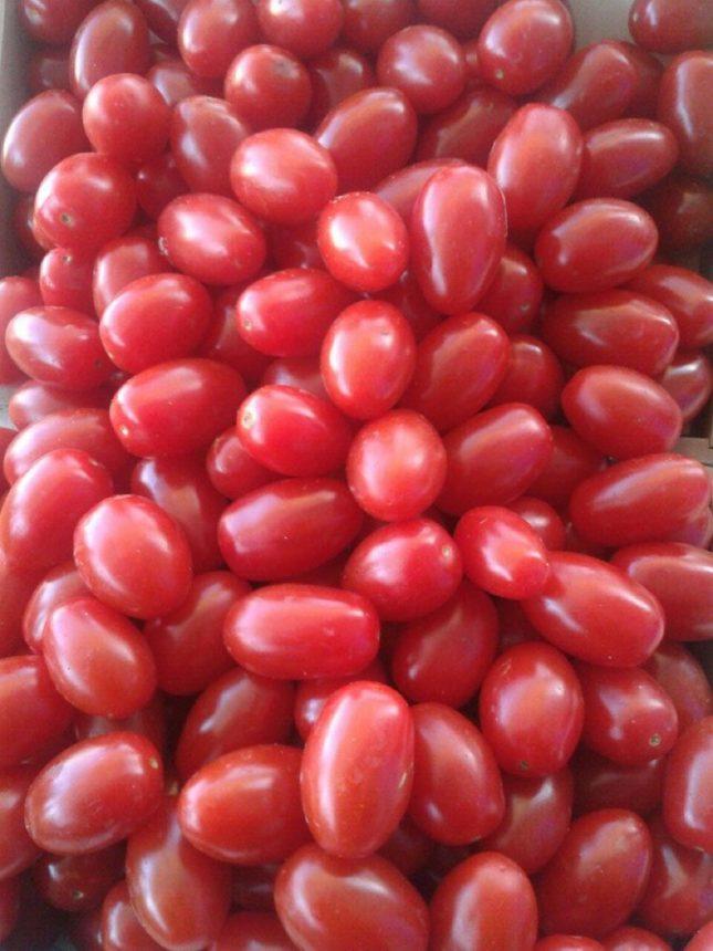 tomates-bombon-valencianos